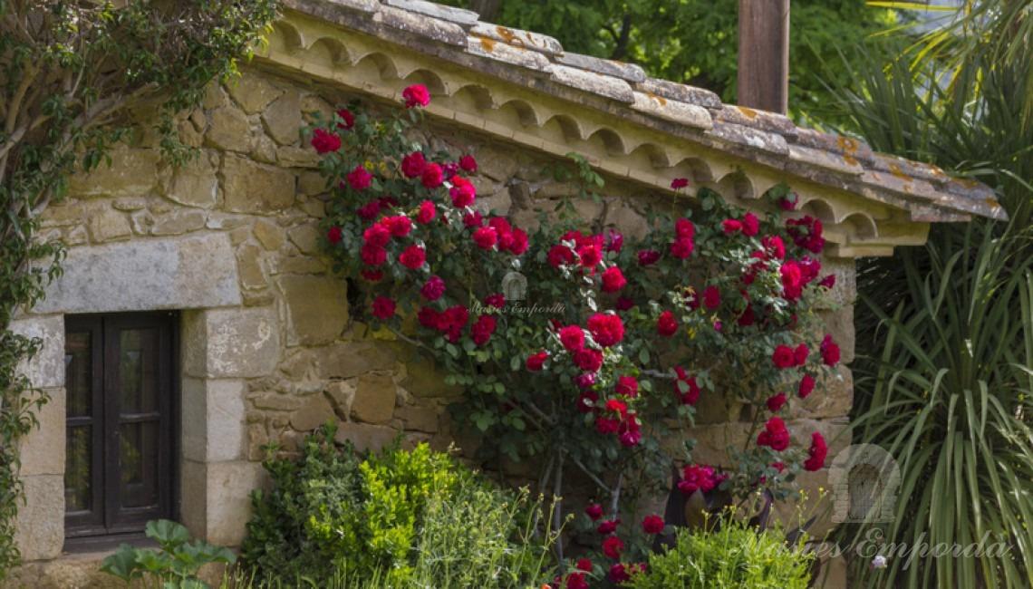 Detalle del jardín y de una de las construcciones de la propiedad