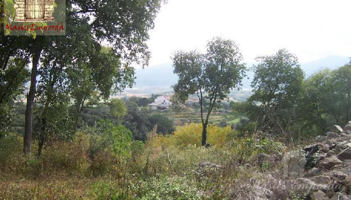 Vista de los campos