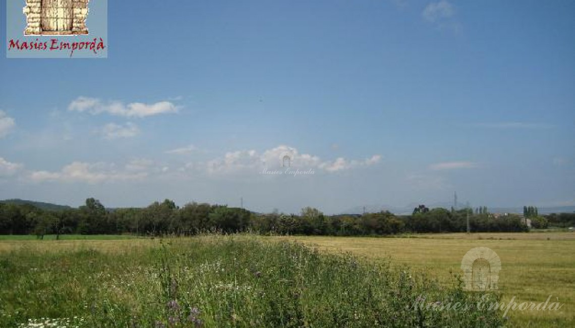 Campos de cultivo de la propiedad
