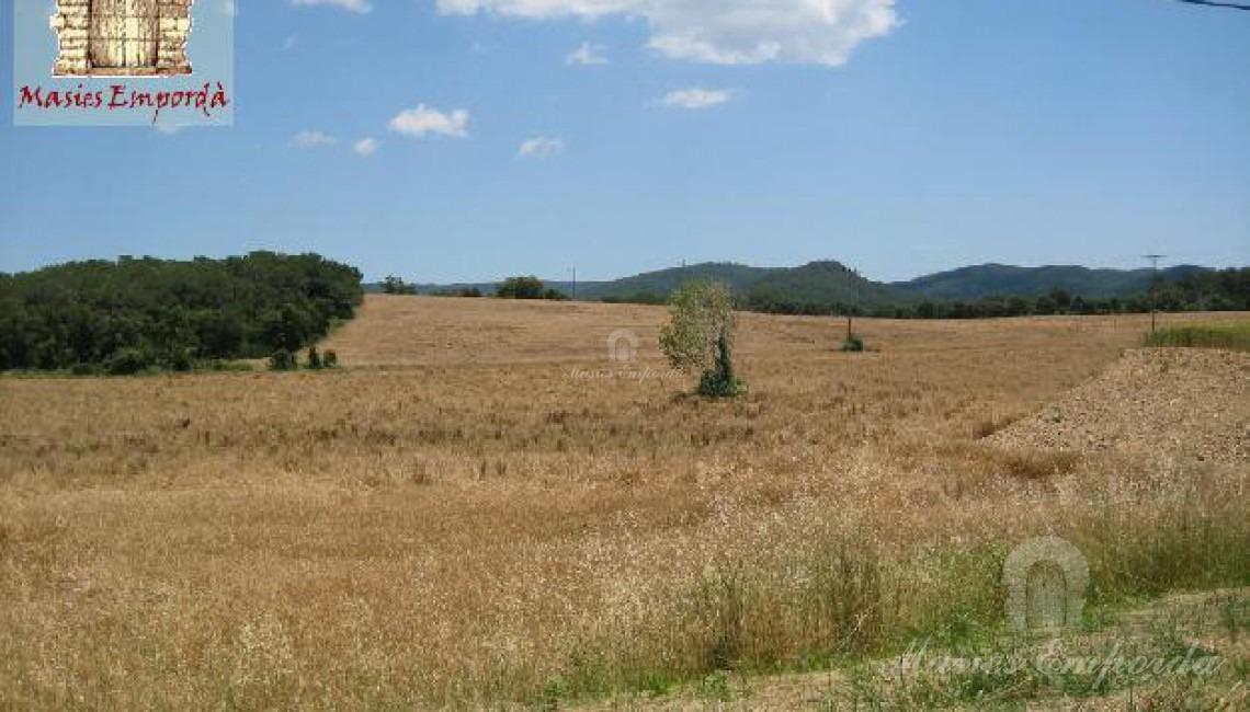 Campos de la propiedad y parte del bosque de la misma