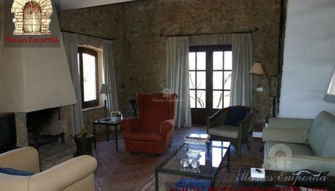 Salón con chimenea de la casa con vistas al jardín