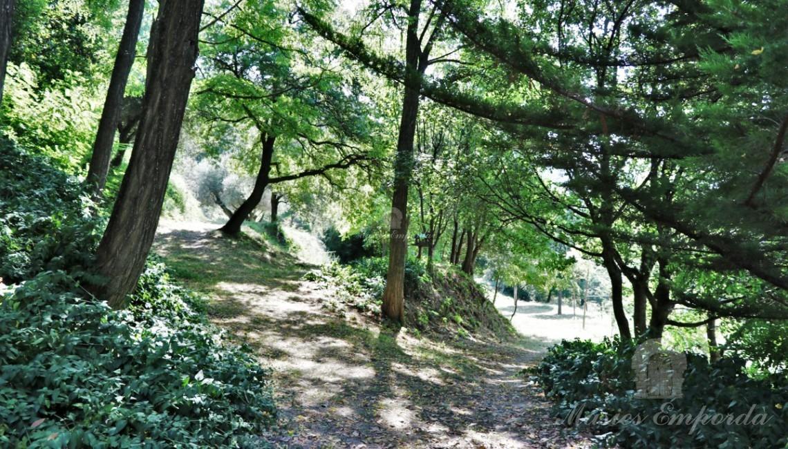 Caminos de los jardines
