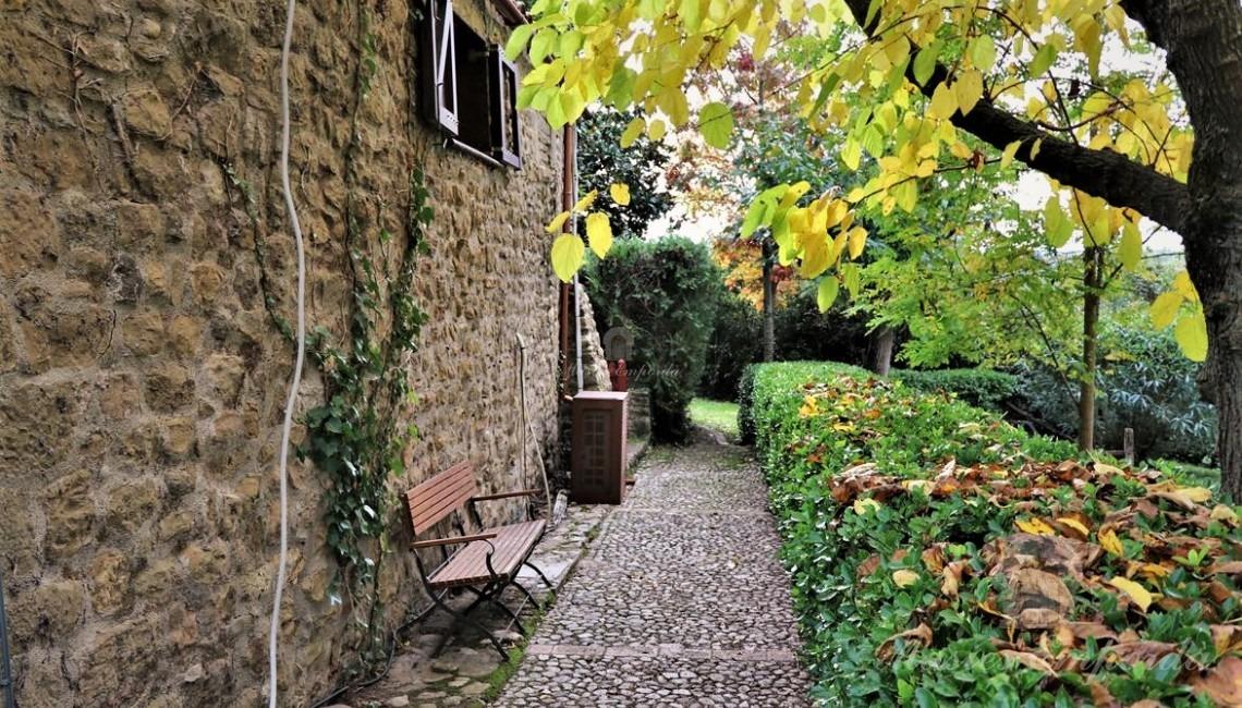Entrada lateral a la casa, jardín y piscina