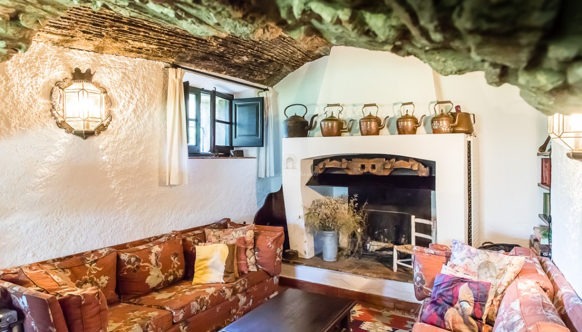 Salón de estar con chimenea junto al hall de entrada