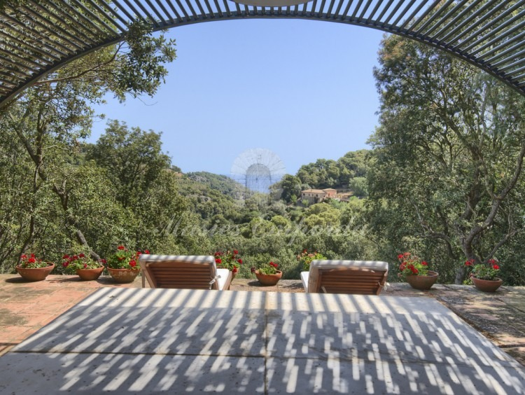 Terraza con porche abovedado