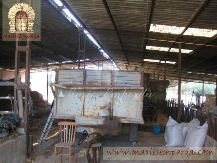 Cuadras de ganado vacuno con remolque de tractor en primer término.