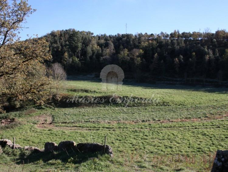 Vista de los campos.