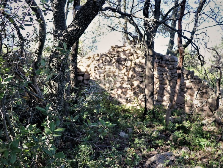 Detalles de las paredes de unos de los anexos a la masía