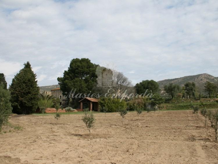 Campo adjunto a la casa con el porche de la piscina al fondo de la imagen.