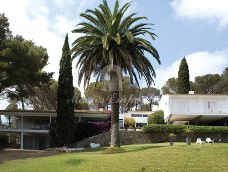 Vista del frontal de la casa desde la zona de la piscina en el jardín con una palmera extraordinaria como centro de la imagen