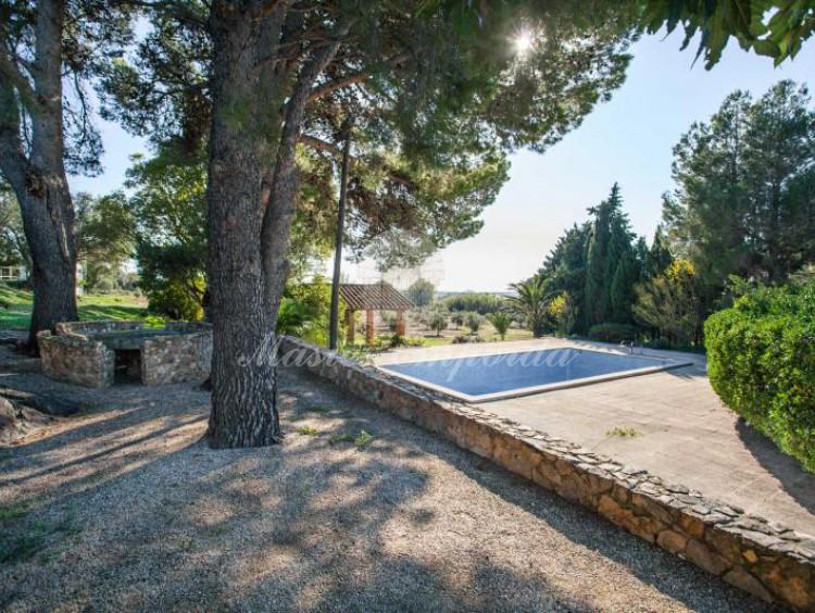 Vista de la piscina desde el jardín