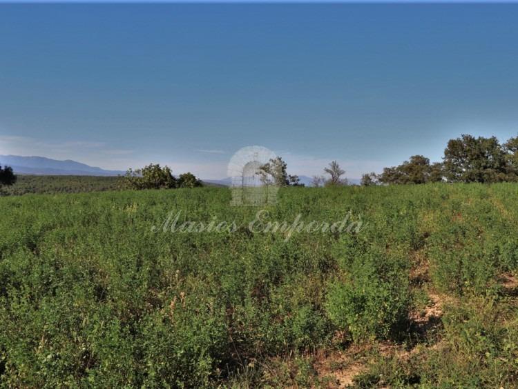 Vista de los campos de la propiedad