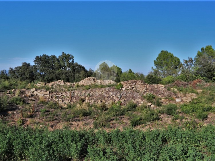 Detalles de la ruina existente en la propiedad