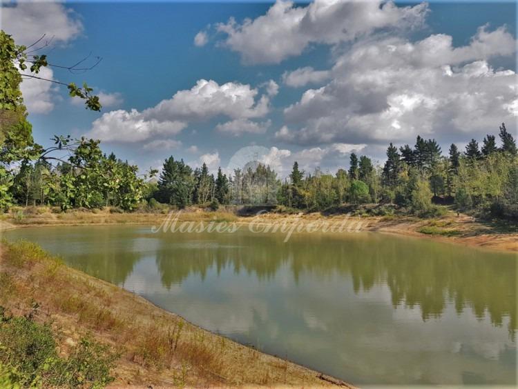 Vistas de la balsa reguladora de riego de la propiedad